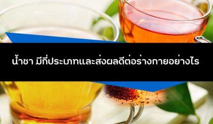น้ำชา มีกี่ประเภทและส่งผลดีต่อร่างกายอย่างไร